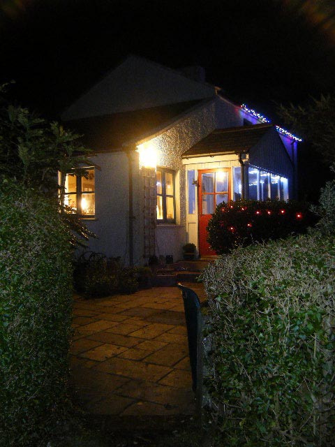 A closer view of Liam & Alison's house lights.
