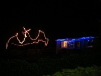 Another angle on George & Liz's lights.
