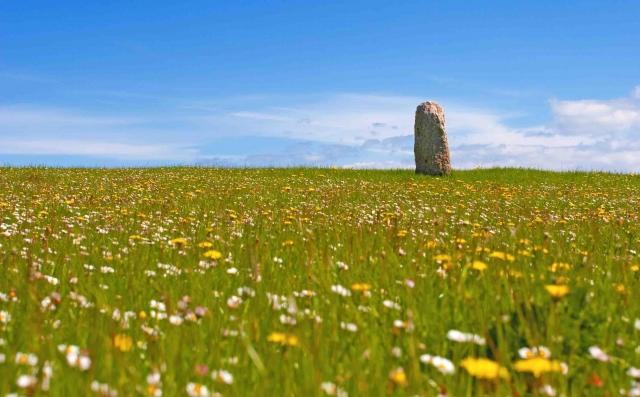 Joint 2nd Place: Colin McIlwaine, 'Standing Stone in Spring Meadow'
